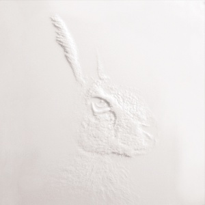 Hasenkopf-Frescata-Konturen-Graustufenfraesung.jpg