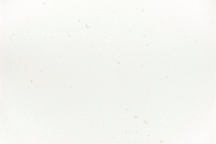 Hasenkopf-Corian-Farben-White-Jasmin.jpg